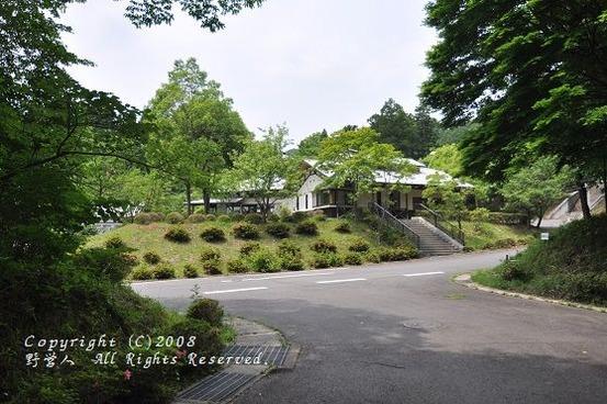 fuji_camp17613