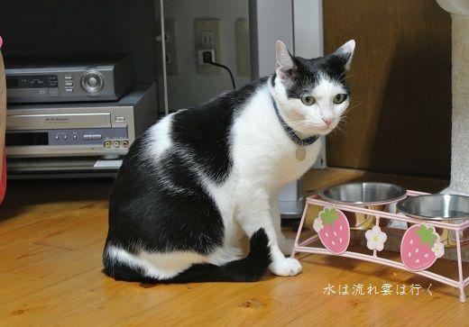 yamato877.jpg