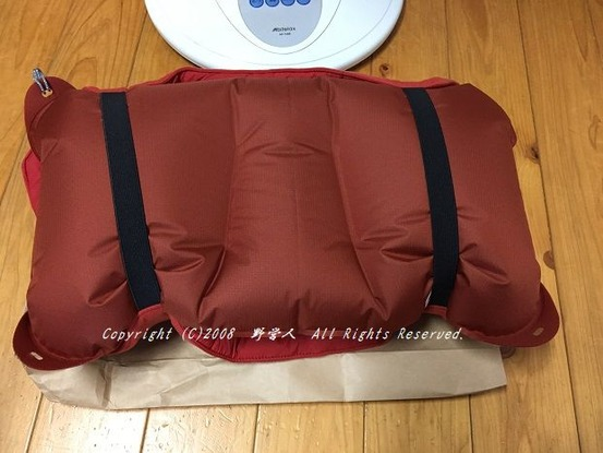 pillow18708