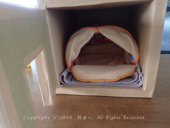 cathouse16917