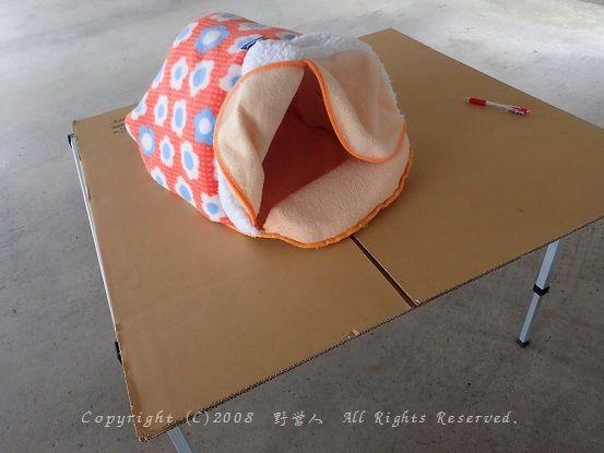 cathouse16901