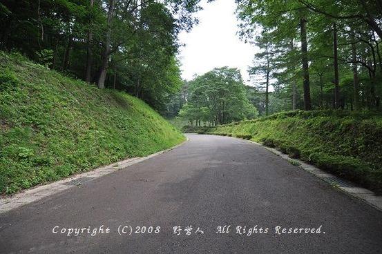 fuji_camp17606
