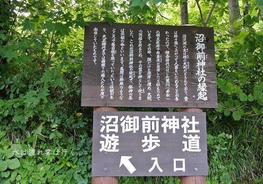 numazawa14752.jpg