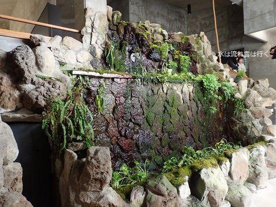 kawasemi150505.jpg