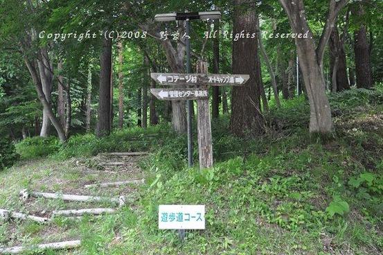 fuji_camp17605