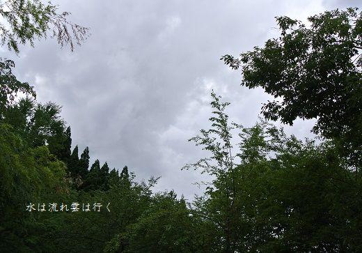 numazawa14736.jpg