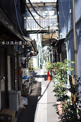 tsukisima1432203.jpg