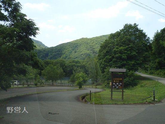 sirakaba16601