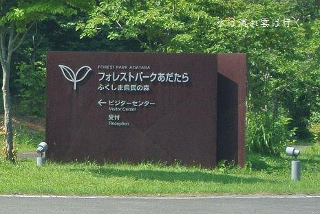 fpa13806.jpg