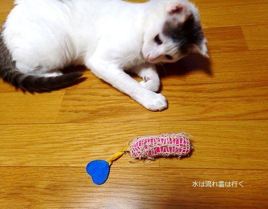 fukumaru114.jpg