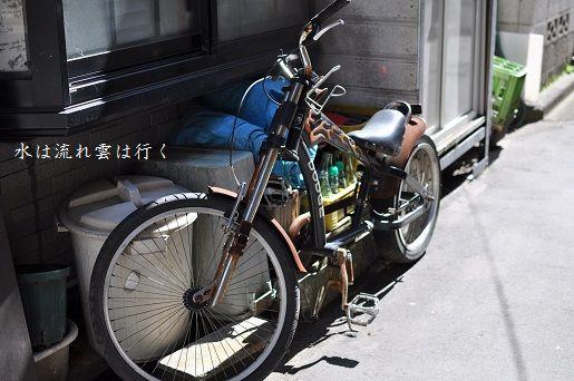 tsukisima1432205.jpg