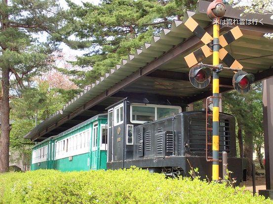 kawasemi150502.jpg