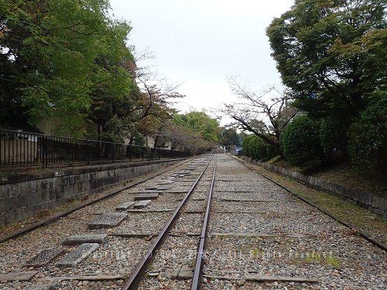 kyoto16019
