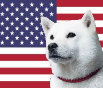 アメリカ放題ロゴ