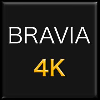 bravia2