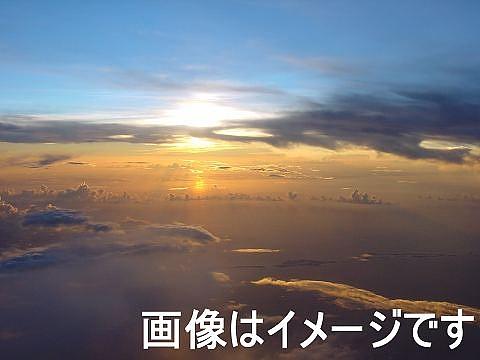 ヤフオク あなたの夢を叶えてあげます!1円〜