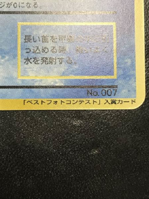 Pokemon card Pokemon snap best photo contest[Snap Cards]mint/ポケモンカード ポケモンスナップベストフォトコンテスト 未使用