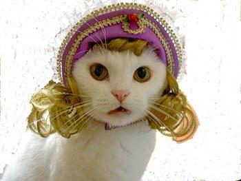 猫ちゃんの姫・王女風ボンネットハット(パープルピンク)犬帽子