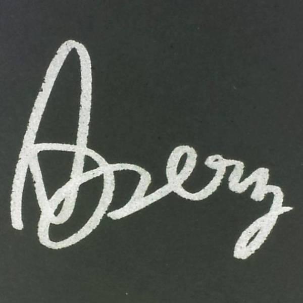 第4回将棋電王トーナメント出場時の「Apery」の命名権