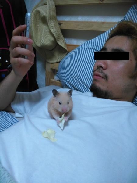 豚コウモリさん(22歳・男)貸し切りチケット