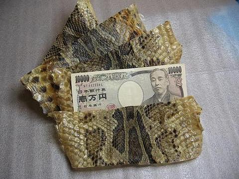 最強の金運アップ 蛇皮 開運 壱万円