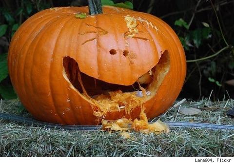 ハロウィンかぼちゃ (17)