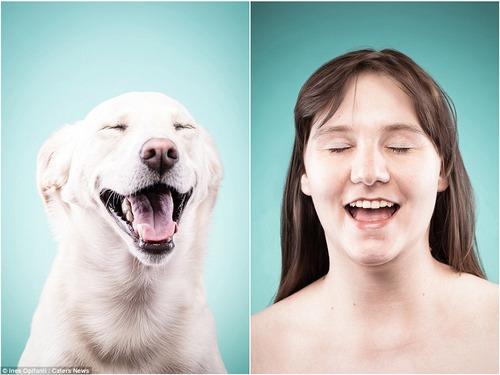 犬の性格は飼い主に似る