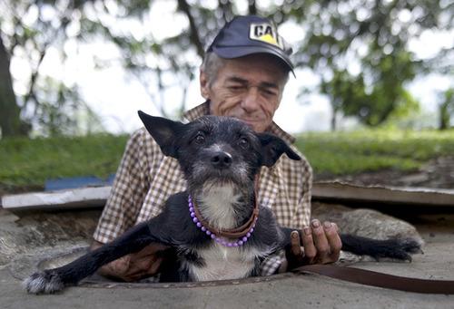 「犬 + お爺ちゃん」とかいう至高の組み合わせ19