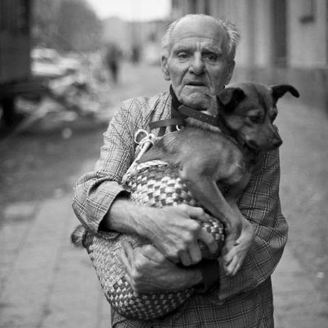 「犬 + お爺ちゃん」とかいう至高の組み合わせ21