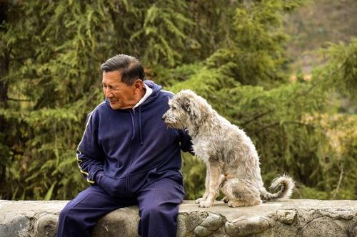 「犬 + お爺ちゃん」とかいう至高の組み合わせ10