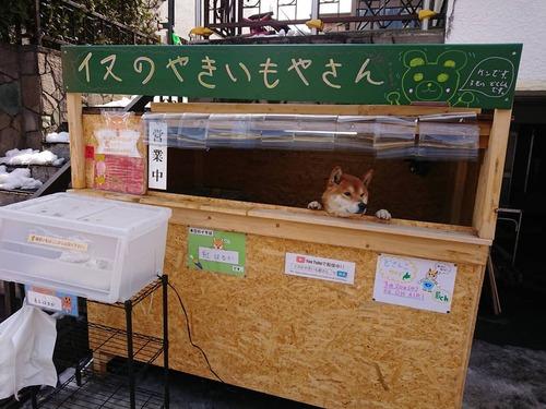 犬の焼き芋屋さん