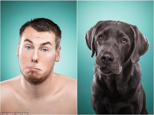 犬の性格は飼い主に似る10