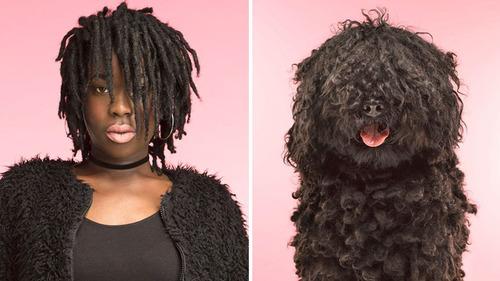 犬の性格は飼い主に似る24