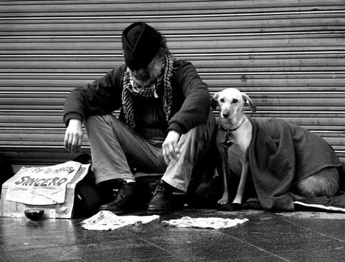 「犬 + お爺ちゃん」とかいう至高の組み合わせ9