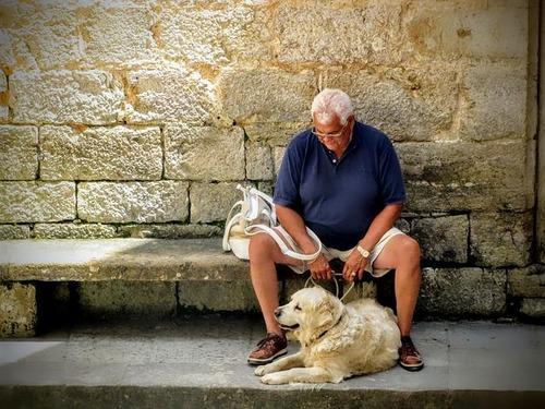 「犬 + お爺ちゃん」とかいう至高の組み合わせ2