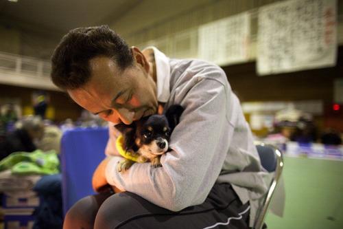 災害時、ペット同伴で避難できるか?