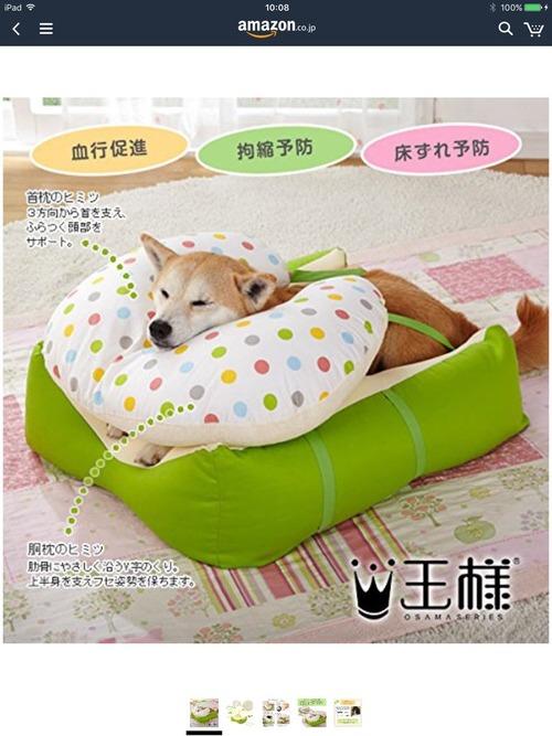 寝たきりのワンコにピッタリな老犬用のベッド