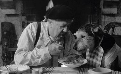 「犬 + お爺ちゃん」とかいう至高の組み合わせ25
