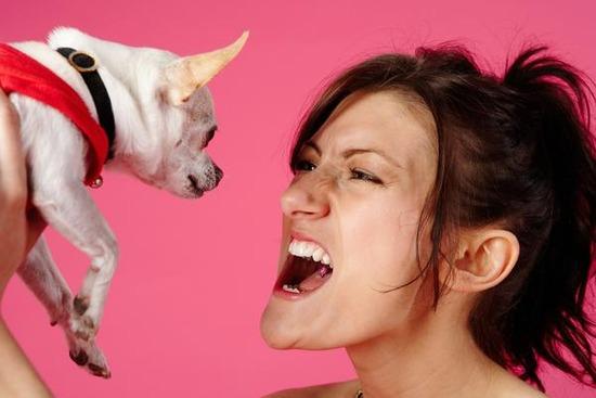 犬と喧嘩して3日口聞いてない