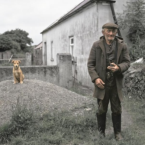「犬 + お爺ちゃん」とかいう至高の組み合わせ3