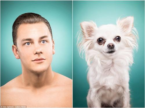 犬の性格は飼い主に似る2