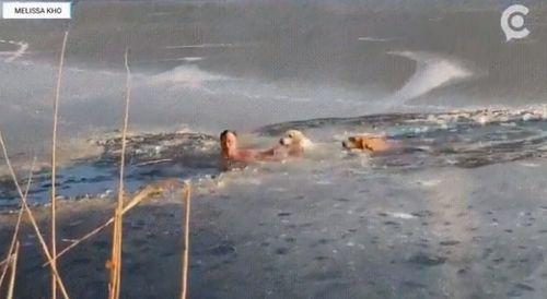 氷った川に犬2匹が落下→た男性が救出