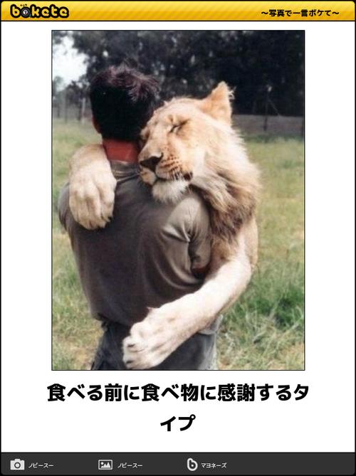 動物のボケて画像貼りましょう21