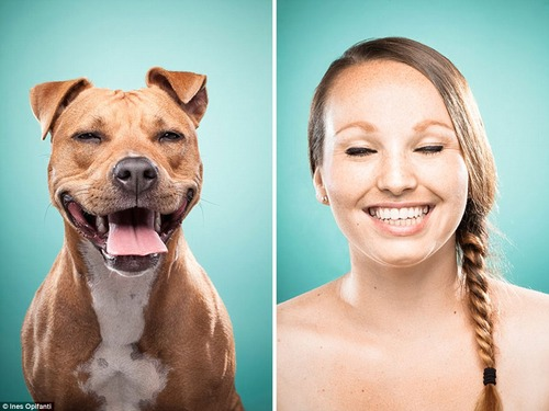 犬の性格は飼い主に似る6
