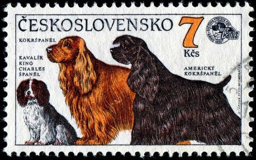 犬が描かれた切手の画像をひたすら貼ってくよ20