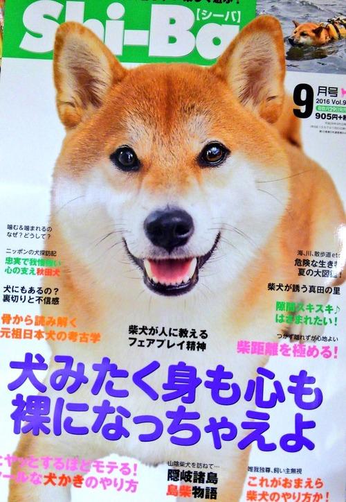 柴犬の雑誌のコピーwwwwww