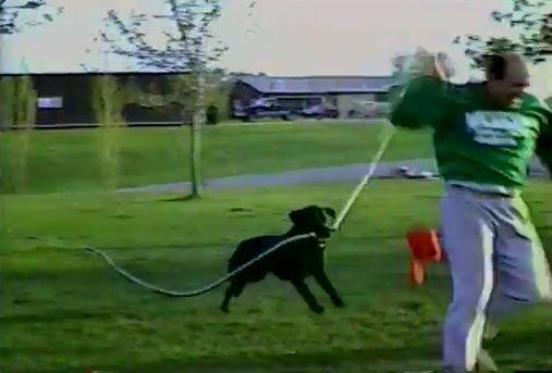 「ご主人!見てこれ!」ホースを咥えた犬が水を撒き散らし大暴れ