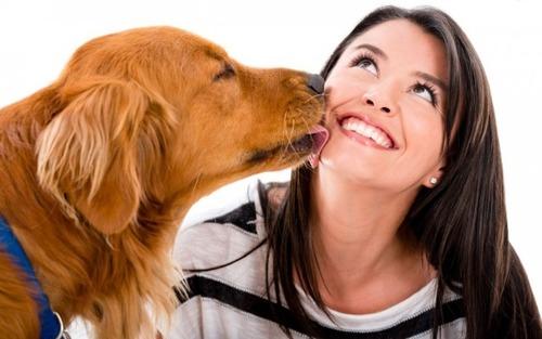 なぜイヌはヒトが好きなのか