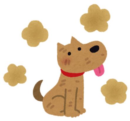 犬から発せられるあの香ばしい臭いの原因
