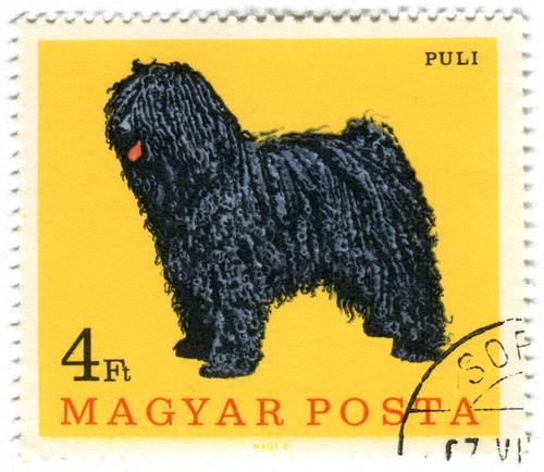 犬が描かれた切手の画像をひたすら貼ってくよ7